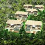 Wild Cottages