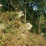 Land for sale – Chaweng – Samui [SA-L-0bdr-113]