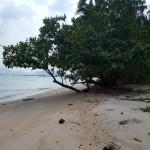 Land for sale – Laem Sor – Samui [SA-L-0bdr-132]