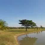 Land for sale – Mae Rim – Chiang Mai [CH-L-0bdr-11]